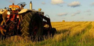 Αποστόλου: Στο 13% από 24% ο ενιαίος συντελεστής ΦΠΑ για τους αγρότες