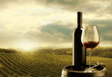 Αύξηση 66% στις εξαγωγές ελληνικού κρασιού στον Καναδά