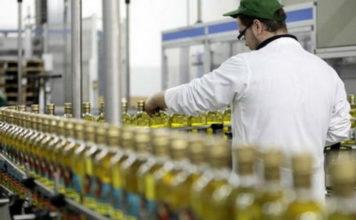 ΙΟΒΕ: Αύξηση 12,1% στις επενδυτικές δαπάνες για τη μεταποίηση