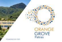 Orange Grove Patras: Έως τις 2 Οκτωβρίου οι αιτήσεις για τη θερμοκοιτίδα επιχειρήσεων