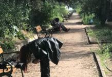 Πεδίο του Άρεως: Ένα ακόμη κέντρο «άγριας ζωής» μες την Αθήνα