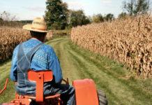 ΔΕΗ: Τέλος στους λογαριασμούς ρεύματος κατά την καλλιεργητική περίοδο