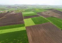 Μέτρο Μ02: Κάθε αγρότης με τον προσωπικό του δωρεάν γεωπόνο