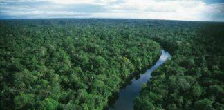 του Αμαζονίου